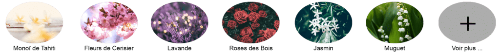 parfum, grasse, montois, cerisier, lavande, rose, jasmin, muguet